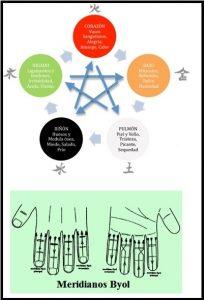 portada para acupuntura español