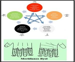 portada para acupuntura español PQ INICIO
